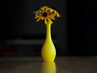 Balloon + Water = Instant Flower Vase