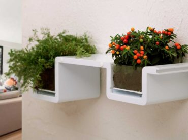 A Planter With The Charisma Of A Bookshelf
