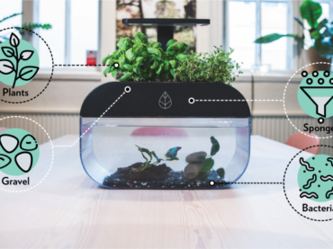 The ECOGARDEN for Fish, Herbs and Happiness