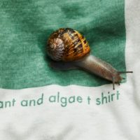 100% BIODEGRADABLE PLANTS & ALGAE T-SHIRT