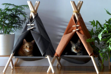 10 BEST BEDS FOR YOUR PET CATS