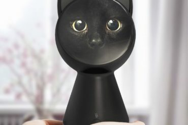 IOT ENABLED BLACK CAT CONTROLS YOUR HOME