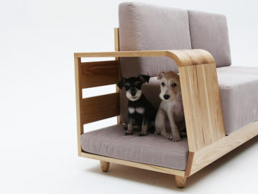 ITS TIME TO SHARE YOUR SOFA WITH YOUR PET?