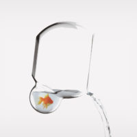 FISHBOWL DESIGNS AND EASY WATER CHANGING