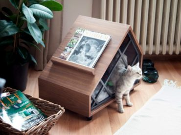 PET FURNITURE FOR YOUR LOVED ONES
